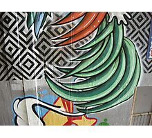 graffiti feathers and patterns Photographic Print