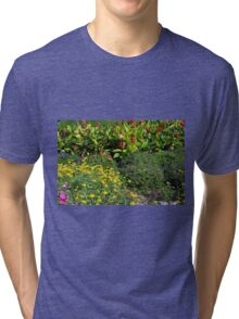 Many colorful flowers in the garden. Tri-blend T-Shirt
