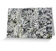 Bush with light green leaves. Greeting Card