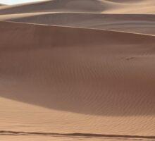 Desert sand dunes. Sticker
