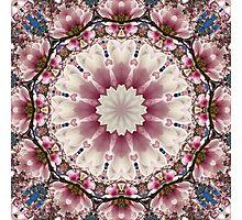 Flower Mandala, springtime glory Photographic Print
