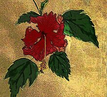 hibiscus - card by James Lewis Hamilton