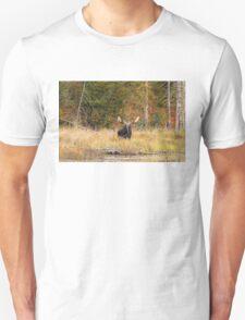 Bull Moose, Algonquin Park T-Shirt