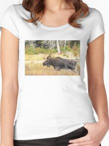 Big Bull Moose, Algonquin Park Women's Fitted Scoop T-Shirt