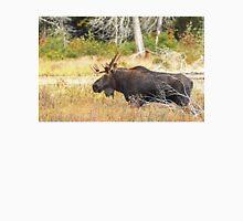 Big Bull Moose, Algonquin Park T-Shirt