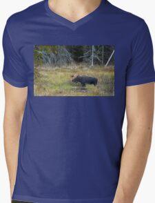 Bull Moose, Algonquin Park Mens V-Neck T-Shirt