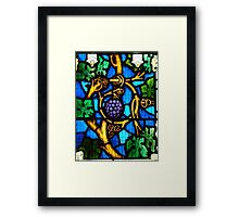 """I am the vine, you are the branches""  Framed Print"