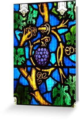 """""""I am the vine, you are the branches""""  by Jan Stead JEMproductions"""