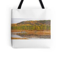 Algonquin Park - Costello Creek Tote Bag