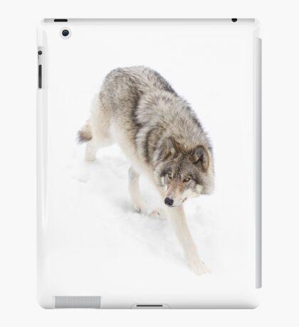 Circling - Timber Wolf iPad Case/Skin