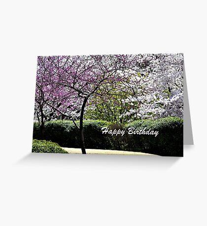 Spring Trees Blooming Birthday Greeting Card
