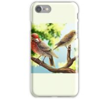 A Pair of Finches iPhone Case/Skin