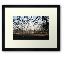 Spider Limbs Framed Print
