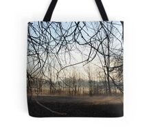 Spider Limbs Tote Bag