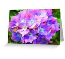 Hydrangea Dreams  (All Sales Proceeds Donated for Cancer Research) Greeting Card