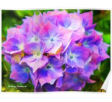 Hydrangea Dreams  (All Sales Proceeds Donated for Cancer Research) Poster