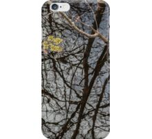 Reflections at Six Mile Cypress iPhone Case/Skin