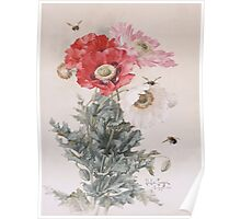 Paul De Longpre Poppies and Bees Poster