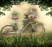 The Old Bicycle by Yannik Hay