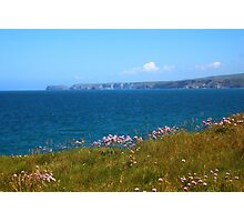 Summer In Cornwall Photographic Print