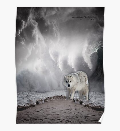Wolf in the Middle of a Storm Poster