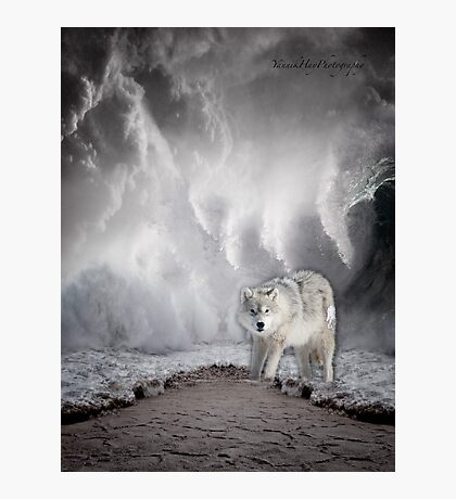 Wolf in the Middle of a Storm Photographic Print