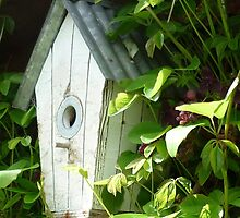 The Bird House by Kaye Miller-Dewing