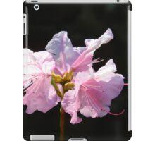 Springtime Neighborhood Walk - 6      ^ iPad Case/Skin