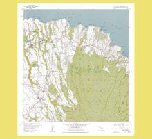 USGS TOPO Map Hawaii HI Haiku 349235 1957 24000 Kids Tee