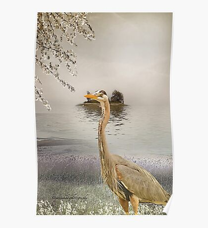Great Blue Heron at Dusk Poster