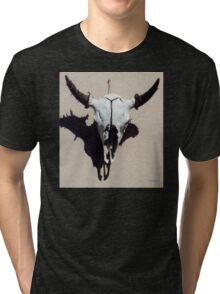 Santa Fe Skull Tri-blend T-Shirt