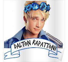 Dalton Rapattoni Flower Crown (American Idol) (IM5) (Fly Away Hero) Poster