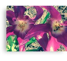 Flower Cell Phone Cover Canvas Print