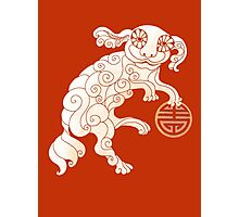 Long Life White Cloud Foo Dog Photographic Print