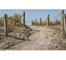 The Pathway to Turtle Beach  Photographic Print