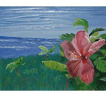 Paradise (Original Flower Oil Painting) Photographic Print