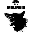 From A Rock To A Malinois by Ashley Siemon
