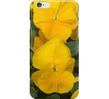 Spring Color - Virginia iPhone Case/Skin