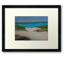Driftwood on the beach Framed Print