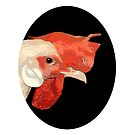 White Rooster portrait. by Mary Taylor