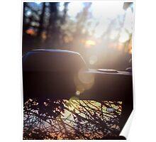 Nikon sunset Poster