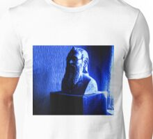 Professor Siegfried Plinth Unisex T-Shirt