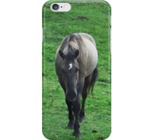 Dusty Mustang  iPhone Case/Skin