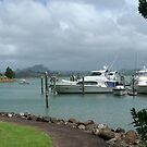 A berth with a view..........Whangaroa Harbour.........! by Roy  Massicks