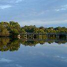 Brunswick River by Ellanita