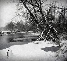 Snowy Stouts Creek by Susan S. Kline