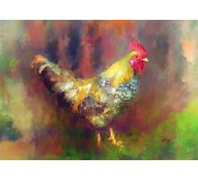 Rockin' Rooster Photographic Print