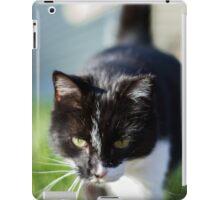 Terry The Cat iPad Case/Skin