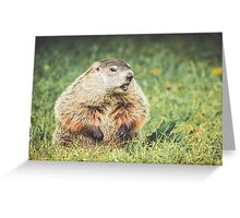 Groundhog in vintage garden setting Greeting Card
