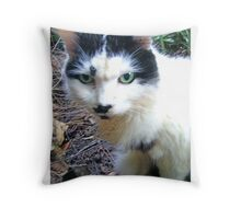 Mithi-fu Throw Pillow